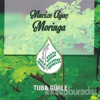 Mucize Ağaç Moringa